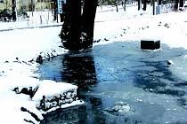 Rybníky v parku čeká vyčištění