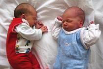 Dvojčátka Adélka a Daniel Netíkovi ze Svatavy – holčička měřila 48 cm a vážila 2,600 kg. Její bratříček měřil 47 cm a vážil 2,510 kg.