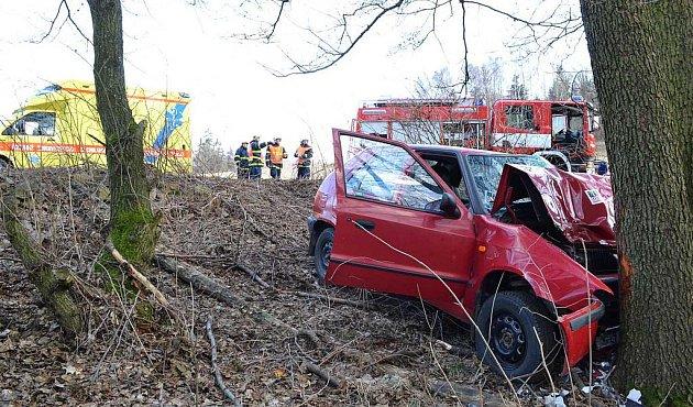 Řidič narazil do stromu.