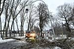 Hasiči likvidují popadané stromy.