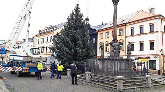 Vánoční strom v Sokolově