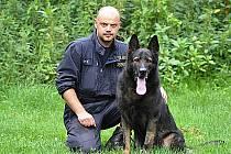 Služební policejní pes.
