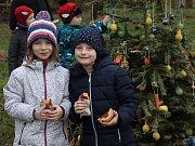 U areálu sokolovského koupaliště děti opékaly buřtíky, ozdobily stromek pro lesní zvířata a hrály různé hry.