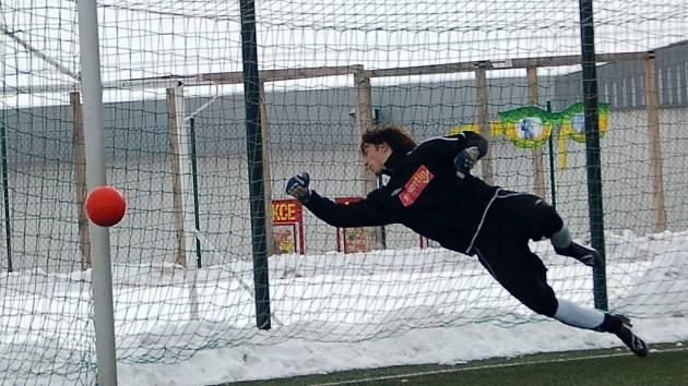 Zimní turnaj SSZ Sokolov