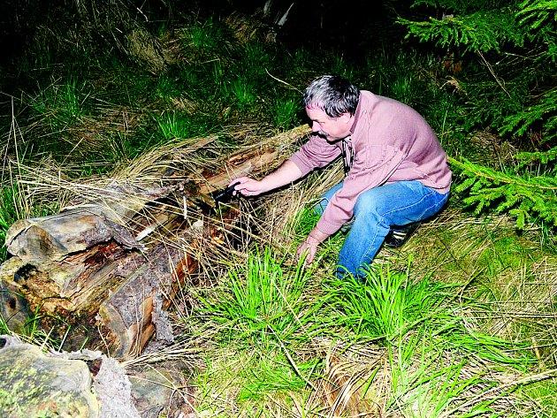 Kačer Petr Čavojský při hledání kešky v lese. Ta může být kdekoliv, a tak prohledává kousek po kousku.