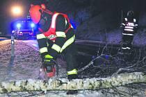 POPADANÉ stromy. Hasiči vyjeli na Sokolovsku k desítkám případů.
