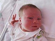 VLÁDÍK MICHAL ze Sokolova se narodil 15. července