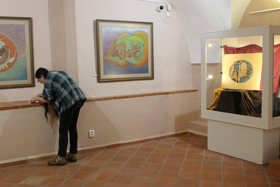 Výstava Drahomíry  Němcové Jandové Vše plyna je k vidění ve výstavní síni v přízemí sokolovského zámku.