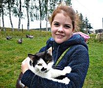 Kočky z kočičího útulku  Konec toulání