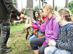 Lesní pedagogika v praxi.
