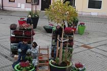 Staré náměstí v Sokolově dostalo zimní výzdobu