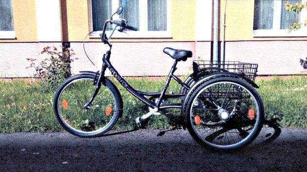 Speciální tříkolka, kterou nemocnému Františkovi pořídil Nadační fond Ještěřice.