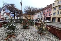 Stromky na loketském náměstí ozdobily děti.
