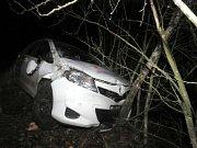 Řidička Toyoty se lekla lišky a havarovala. Auto je na odpis.