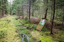 V rašelinách je přírodní rezervace, zahrnující několik rašelinišť vrchovištního a přechodového typu, s mocností vrstvy rašeliny do 2 metrů.