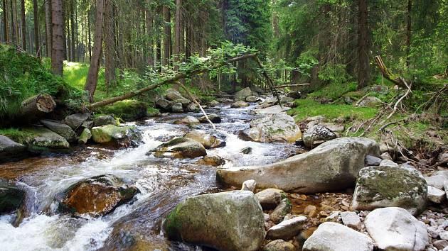 Přírodní park Jelení vrch je chráněné území nedaleko obce Přebuz na Sokolovsku.