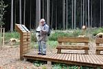 Pietní místo v lese u Jindřichovic.