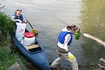 Čištění řeky Ohře 2008.