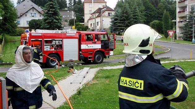 DOBROVOLNÍ HASIČI v Kynšperku nad Ohří při likvidaci sršního roje.