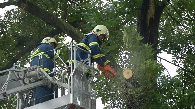 Hasiči rozřezávají strom, který zasáhl blesk.