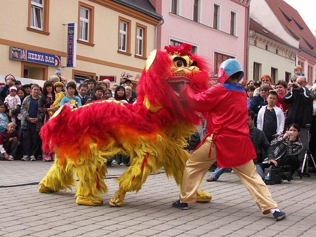 Dračí tanec v Sokolově