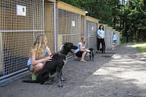 Provizorní záchytné zařízení pro zvířata na Vránově