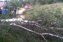 SILNÝ VÍTR lámal v celém kraji stromy. Hasiči vyjeli k více než dvaceti událostem za pouhé dvě hodiny. Na Sokolovsku byla nejhorší situace na Kraslicku.