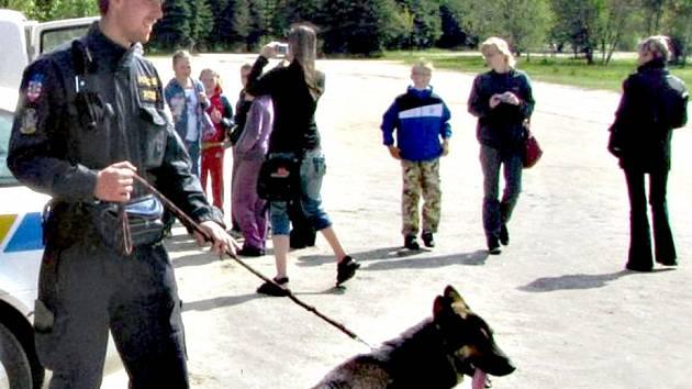 POLICEJNÍ pes Pier (na snímku) si připsal úspěšný zákrok. Vystopoval mladíka, který chtěl spáchat sebevraždu.