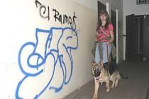 VLAKOVÉ NÁDRAŽÍ. Posprejované zdi jsou jen jednou z věcí, jež po svém každodenním řádění vandalové na vlakovém nádraží v Novém Sedle zanechávají.