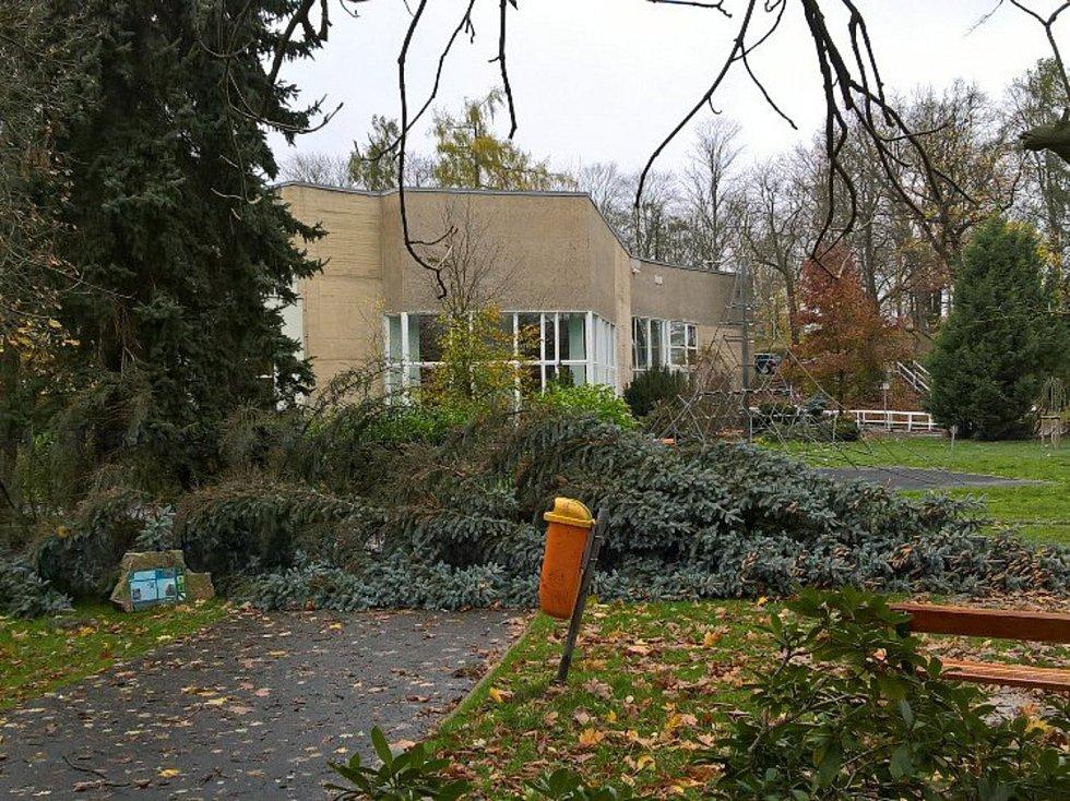 Vichřice v Sokolově