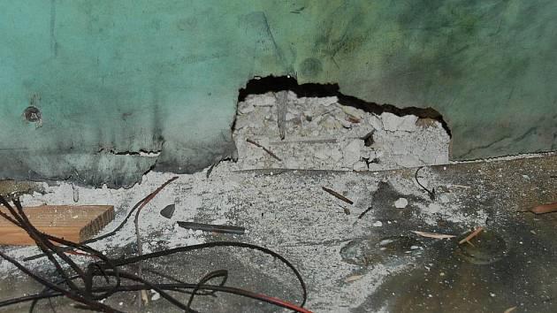 Záchrannou stanici handicapovaných živočichů Drosera v Bublavě zasáhl v pátek odpoledne kulový blesk.