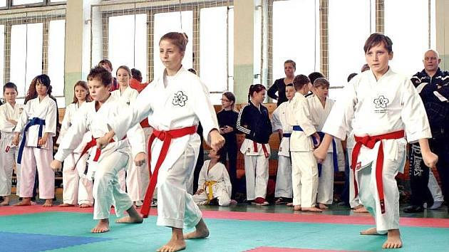 Starší žáci Shodokanu v akci