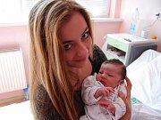 DAVÍDEK PULEC ze Sokolova se narodil 11. dubna. Na snímku je v náručí své sestry Natálky.