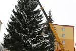 Kácení vánočního stromu v Kraslicích.