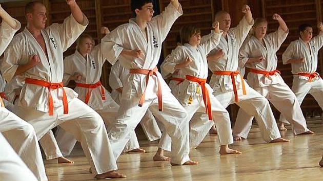 Mimořádné zkoušky Kyokushin karate v Sokolově
