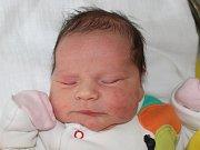 Viktorka Skopalová z Chodova se narodila 20.12.2018.