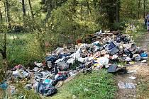 Černá skládka komunálního odpadu vyrostla v chráněné krajinné oblasti Bystřina u Kostelní Břízy. Město Březová bylo nuceno ji na své náklady zlikvidovat.