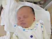 ADÁMEK LEICHT ze Sokolova se narodil 21. března.