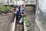 Relax při sázení ve skleníku