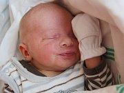 ROBÍK PFEIFFER z Březové se narodil 3. září