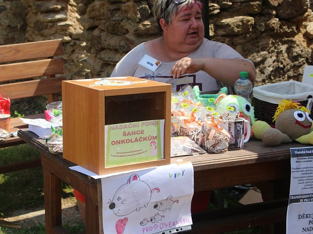 Na hradě Hartenberg uspořádala paní Věra akci pro děti, jejíž výtěžek šel na konto nadačního fondu Šance onkoláčkům.