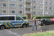 EVAKUOVAT obyvatele asi dvaceti bytů musela policie ve Spartakiádní ulici v Sokolově. V jednom z bytů se totiž našly nelegálně držené zbraně a munice.