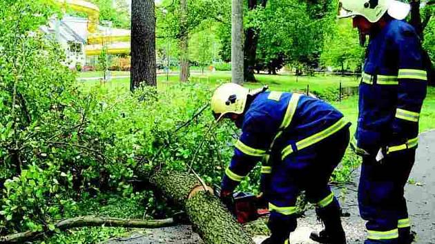 V Sokolově poranil padající strom chlapce