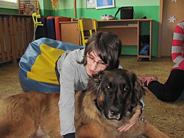 Mazlení se psy si užívali v Denním stacionáři Mateřídouška všichni klienti, kteří chtěli, třeba i Nikolka (na snímku). Při canisterapii psi svým teplem pomáhají i při těžším handicapu.
