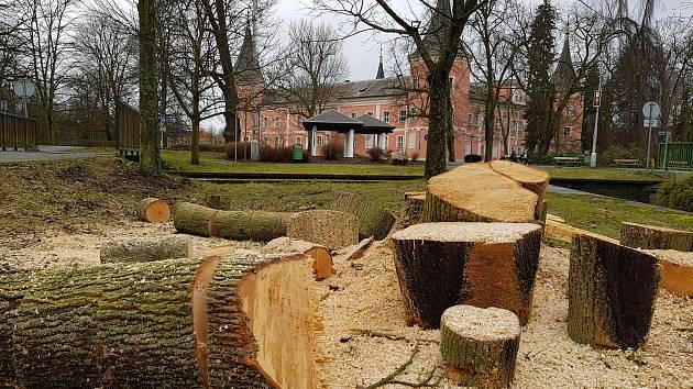 V parcích začali kácet stromy