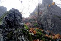 Podhorní vrch je nejvyšším vrcholem Tepelské vrchoviny.