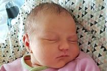 Stela Sabová z Chebu se narodila 26.11.2019