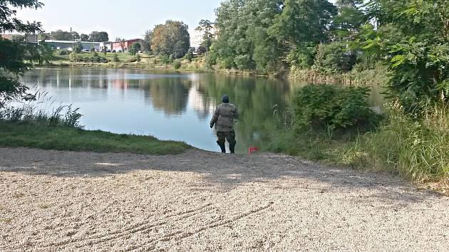 Jedním z míst, kde mohou psi běhat na volno, je okolí bývalého lomu Gsteinigt