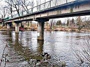 Krejcarová lávka přes řeku Ohři