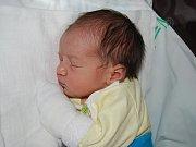 TOMÁŠEK MIKO ze Sokolova se narodil 13. listopadu
